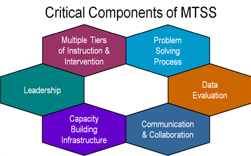 6 Critical Components of MTSS