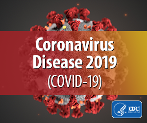 Click here for the most up-to-date Coronavirus Updates from the schools system