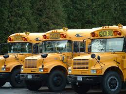 Image of School Buses
